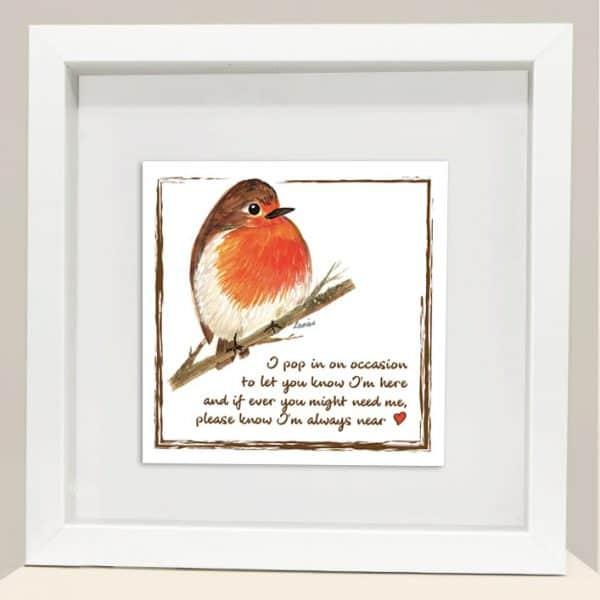 robin frame 1